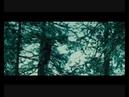 сумерки Twilight -одиссей и пенелопа .wmv