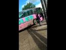 автобус для гламурных чик