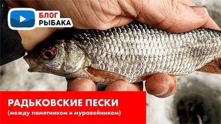 Красный Оскол. Рыбалка в палатке втроём. Приучаем друзей к зимней рыбалке.