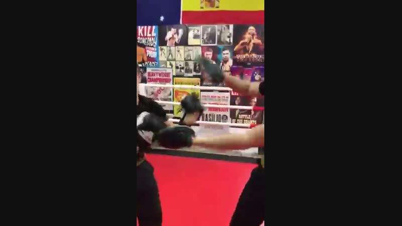 Профессиональная работа на тактических боксерских лапах
