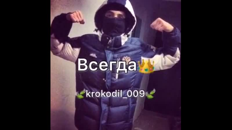 Krokodil_009InstaUtility_abe67.mp4