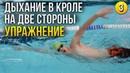 Как правильно дышать при плавании кролем №3 Крутое упражнение на билатеральное дыхание