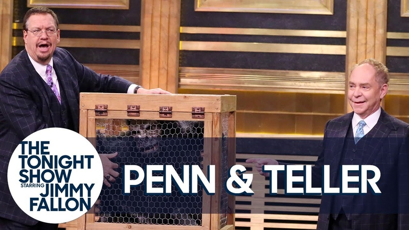 Penn Teller Give a Lesson in Misdirection Using a Vanishing Chicken