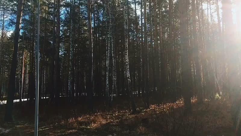 PEARL OF SIBERIA ☀️ TEAM TATARSTAN