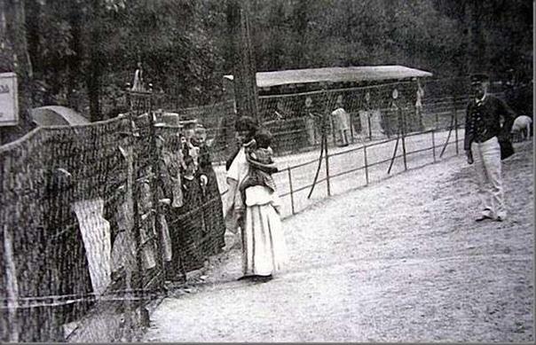 Человеческие зоопарки в Европе. Об этом в современной мультикультурной и политкорректной Западной Европе не любят вспоминать, однако «человеческие зверинцы» существовали там вплоть до Второй