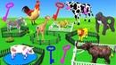 Learn Wild Animals Supermarket Shopping Cart Toys For Kids | Animals Cartoon Nursery Rhymes