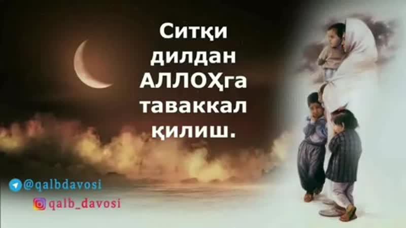 Fozil_qori_sobirov_2BwcS6kCAJ8G