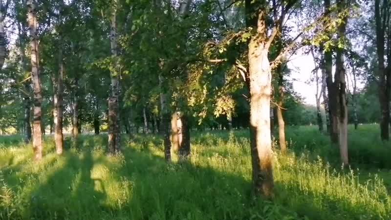 Хрум-хрум