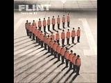 flint-aim 4