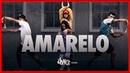 AmarElo - Emicida part. Majur e Pabllo Vittar | FitDance SWAG (Official Choreography)