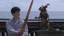 Хроники Нарнии: Покоритель Зари / The Chronicles of Narnia: The Voyage of the Dawn Treader (2010) (фэнтези, приключения, семейный)
