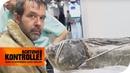 Unglaublich! Zoll findet Fisch im Koffer - Ist das legal? | Achtung Kontrolle | kabel eins