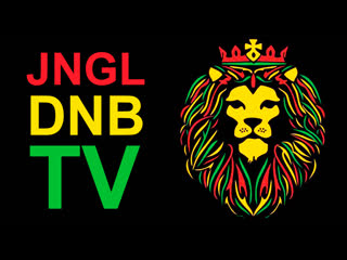 🌴 jungle dnb tv 🌴 24/7 ✈ use wifi