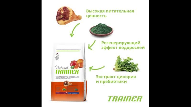 Сухой корм Trainer® Natural Medium with Dry-Cured Ham and Rice