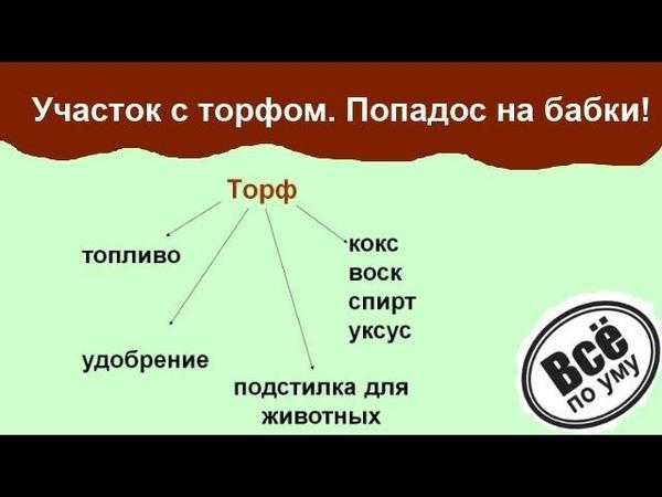 2 Торф на участке Как выбрать земельный участок Все по уму Все по уму На стройке