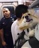 тут все законно начальник с собакой в метро