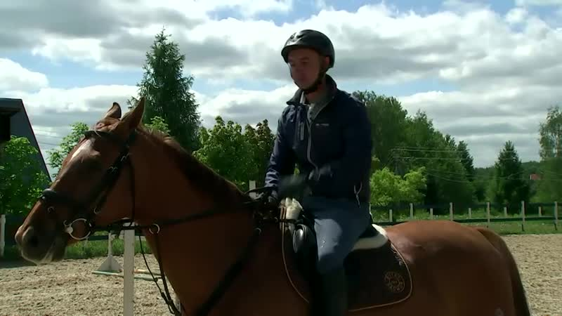 Мастер класс с Андреем Лысенко Управление конкурной лошадью