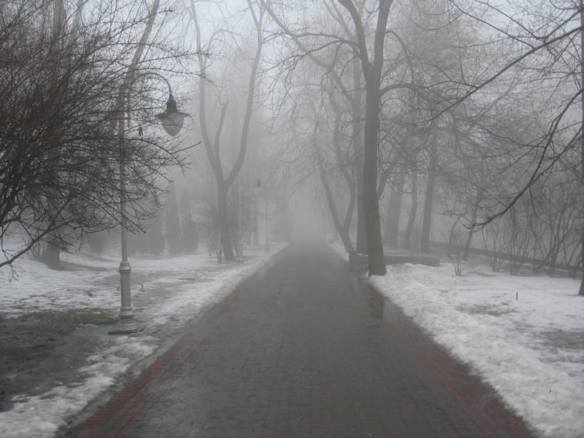 В Курске завтра вновь ожидается туман