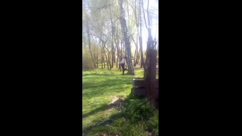Валка дерева бензопилой Урал (канал в Ютубе Виктор Пурик)