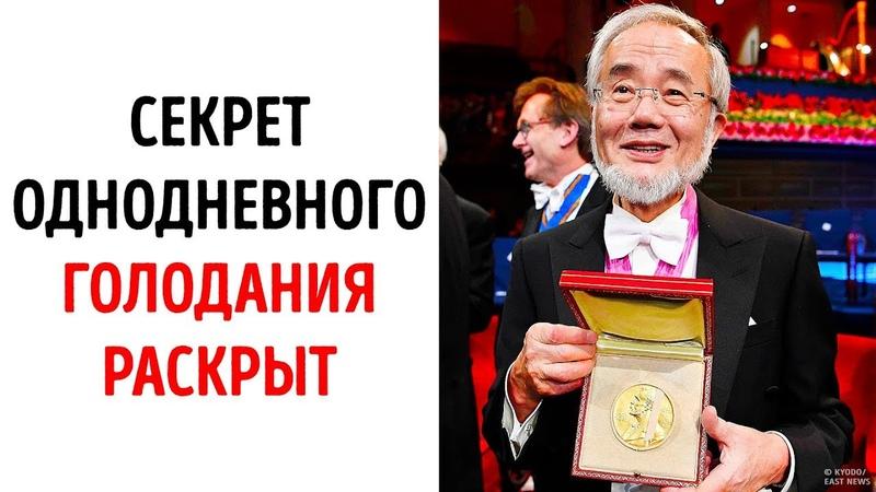 Теория однодневного голодания получила нобелевскую премию