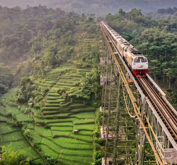 Железнодорожный мост Чикубанг, Западная Ява, Индонезия