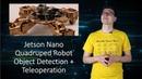 Jetson Nano Quadruped Robot Object Detection Teleoperation