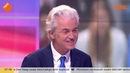 Wilders ziet nerveuze Rutte in aanloop naar debat met Baudet: 'Hij is in paniek' - YouTube