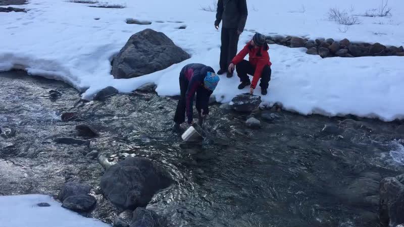 Ведро в речке Актру Май 2019