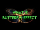 What is butterfly effect