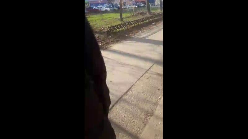 Шамиль Рахматджонов - Live