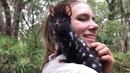 Крапчатая сумчатая куница Meet Qunicy the adorable Eastern quoll
