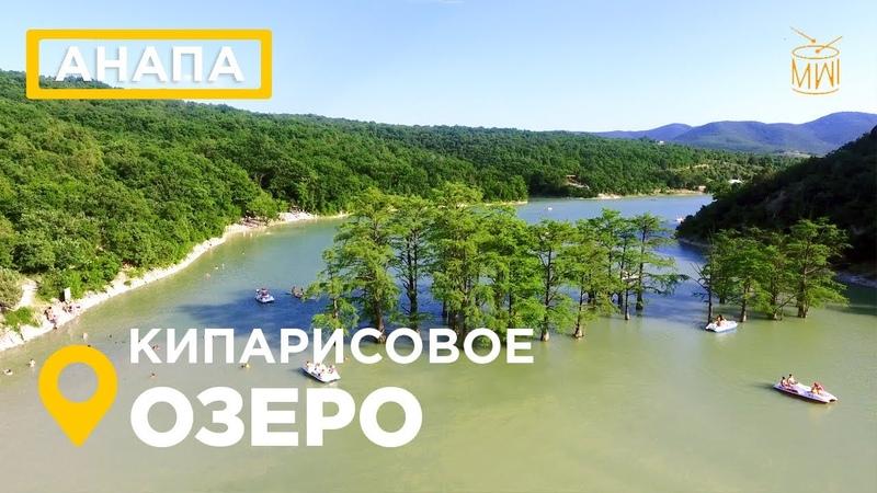 Кипарисовое озеро Сукко Анапа 2019 озеро деревья в воде Черное море дикийдикийЮг mw_i