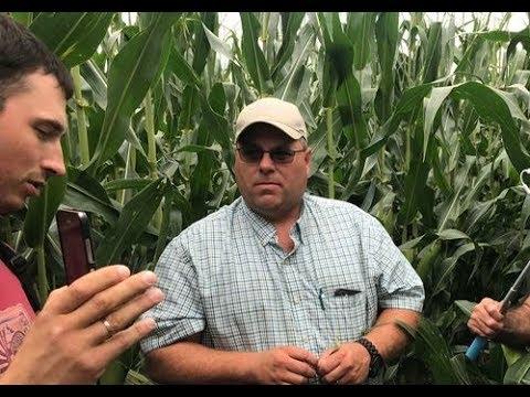 Орошаемая кукуруза на ферме Райана Спира Канзас США часть 1