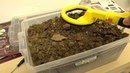 Nokta Makro Pulse Dive detector vs highly mineralization stability test