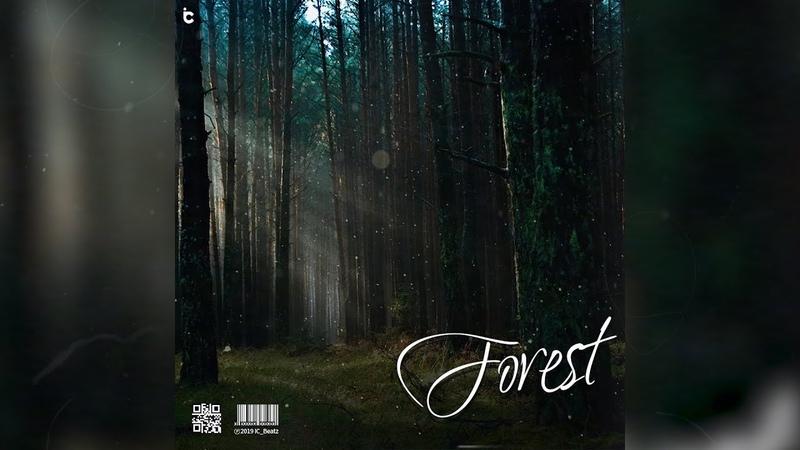 IC_Beatz - Forest | Kodak Black Type | Atmospheric Beat | icbeatz.com