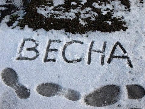 Доброе снежное утро!