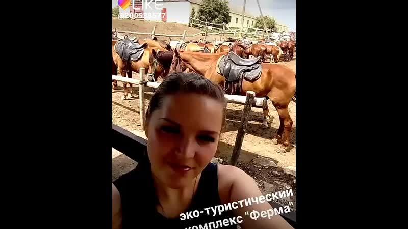 анапа конныепрогулки квадроциклы животные и много всего интересного 6 08 19 день рождения эко туристическийкомплексферма