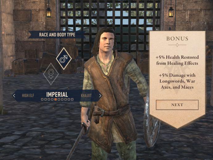Имперцы в The Elder Scrolls Blades