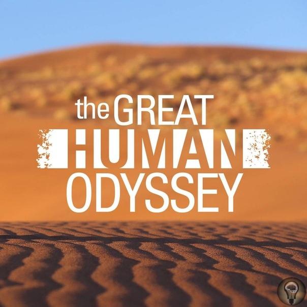 Великая одиссея человечества