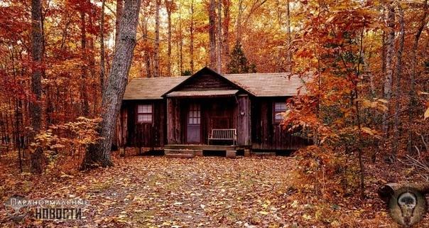 Убийство «Темного ходока» из лесов Пенсильвании Эта история была прислана американскому исследователю загадочных существ Лону Стриклеру. Ее автор пожилой мужчина по имени Джон, который живет на