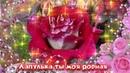 ДОРОГОЙ ПОДРУГЕ Красивые розы музыка и стихи