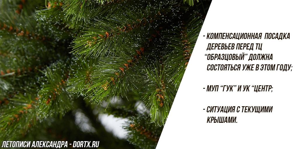 Компенсационная посадка деревьев возле ТЦ Образцовый