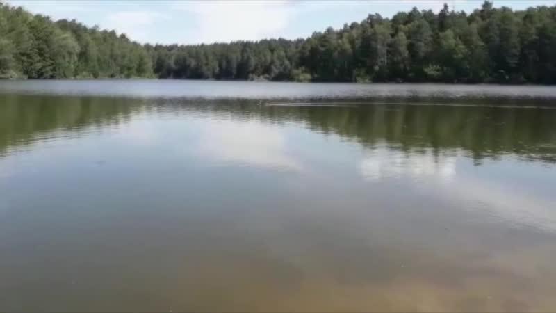 Озеро лесное уборка 2019