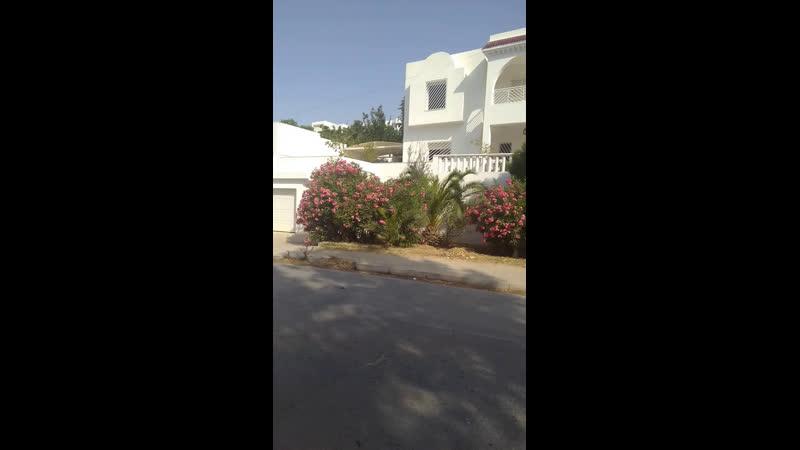 Погода, море, Хаммамет, Тунис.