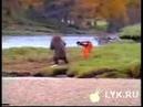 Драка человека с медведем.wmv