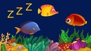 Baby Schlaflieder und Entspannende Fische Animation - Kinder Einschlafmusik