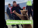 Поединок Хабиба Нурмагомедова и медведя
