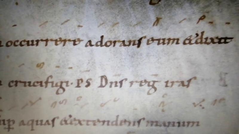 Beatus Petrus Apostolus
