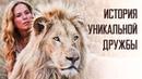 Индустрия кино про семейный фильм Девочка Миа ибелый лев