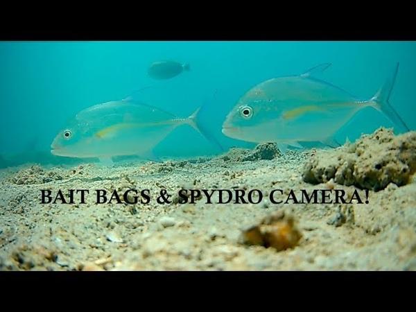 Big Vics Bait Bags Underwater wSpydro!